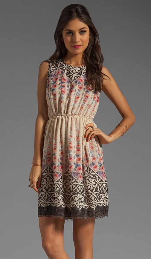 Rose Trellis Border Print Chiffon Dress