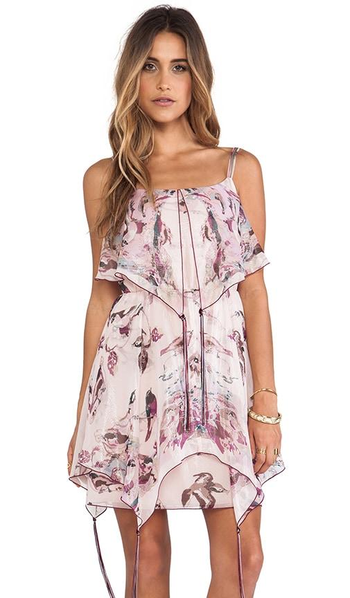 Sparrows Scarf Print Dress