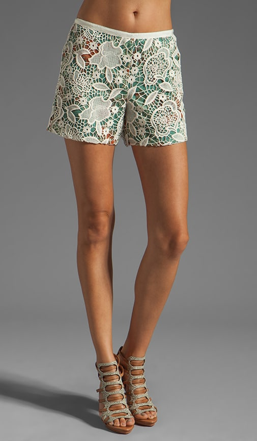 Filigree Print Crinkle Chiffon and Lace Shorts
