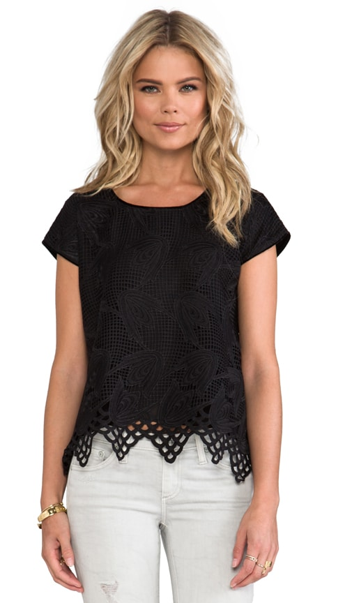 Lily Lace With Velvet Top