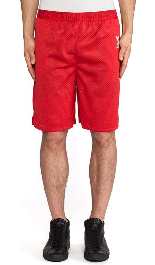 Gladiator Shorts