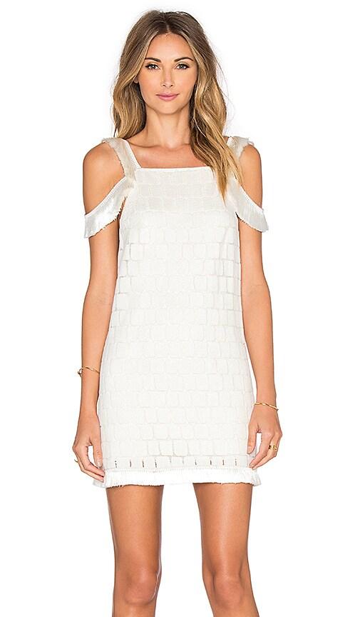 Alexis Jasmine Dress in White