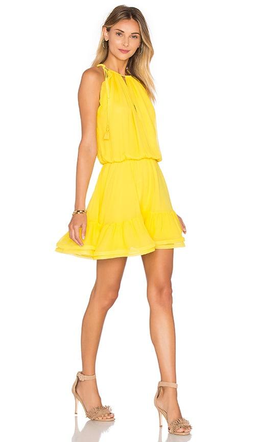 Alexis Monic Dress in Yellow