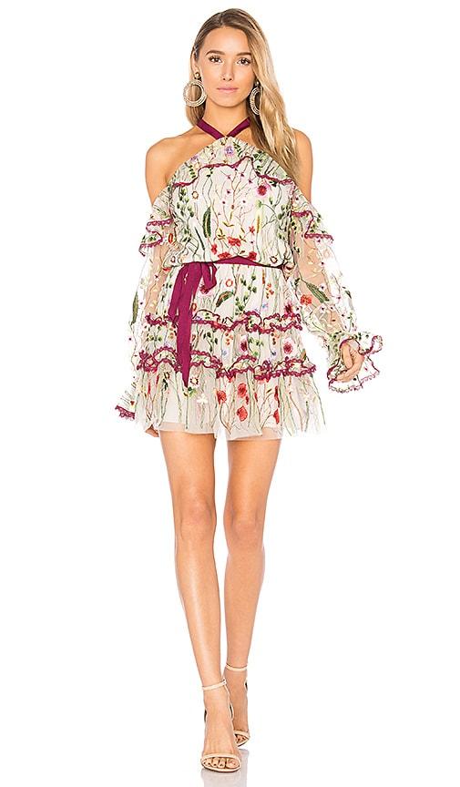 Alexis Adeline Dress in Beige