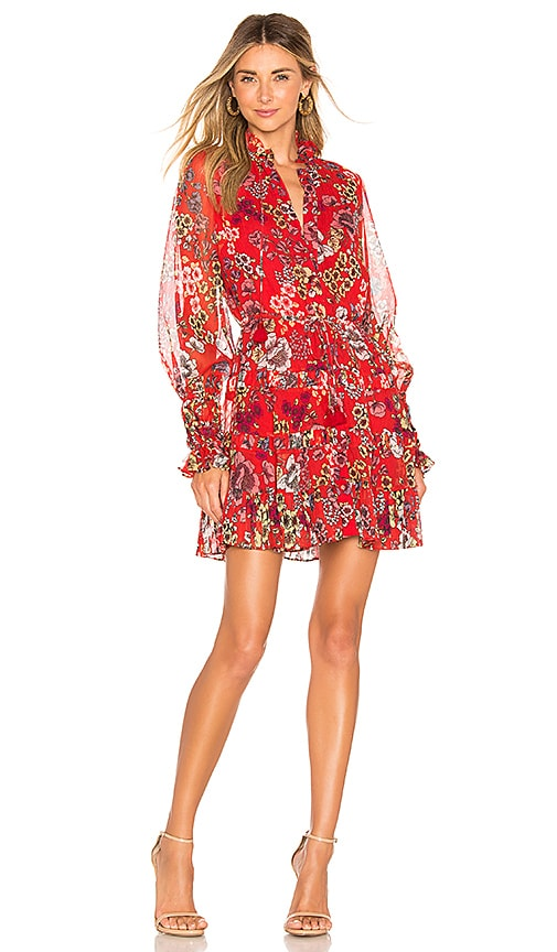 Jaila Dress