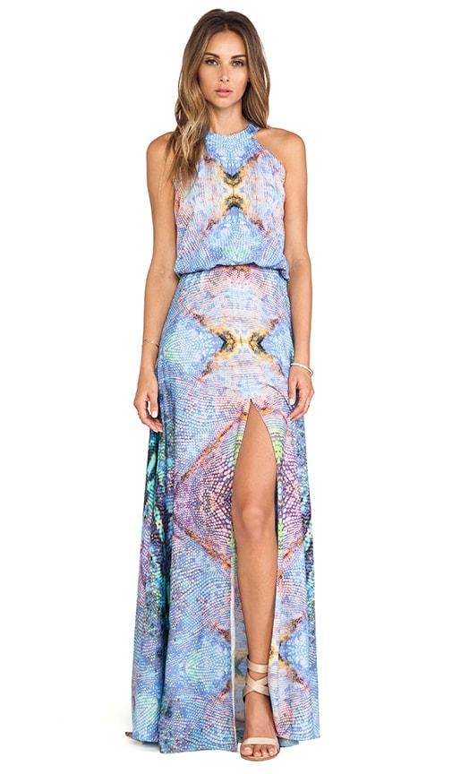 Nervis Maxi Dress