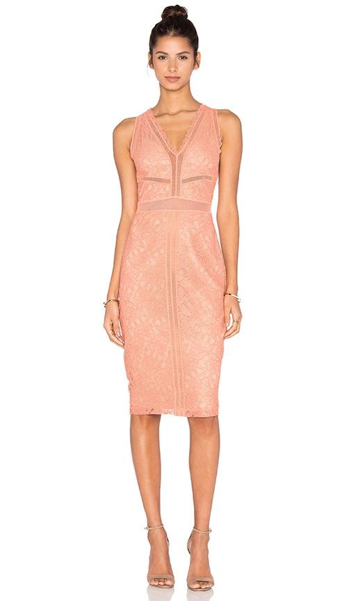 Snapdragon Dress