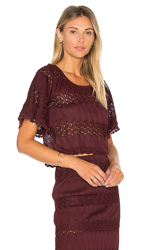 Band of Gypsies Crochet Crop Top in Purple
