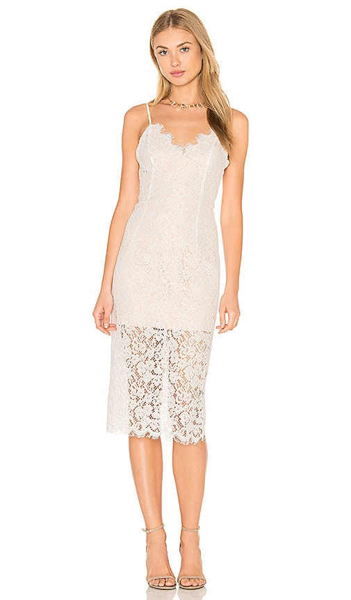 Bardot Sienna Lace Dress in Beige