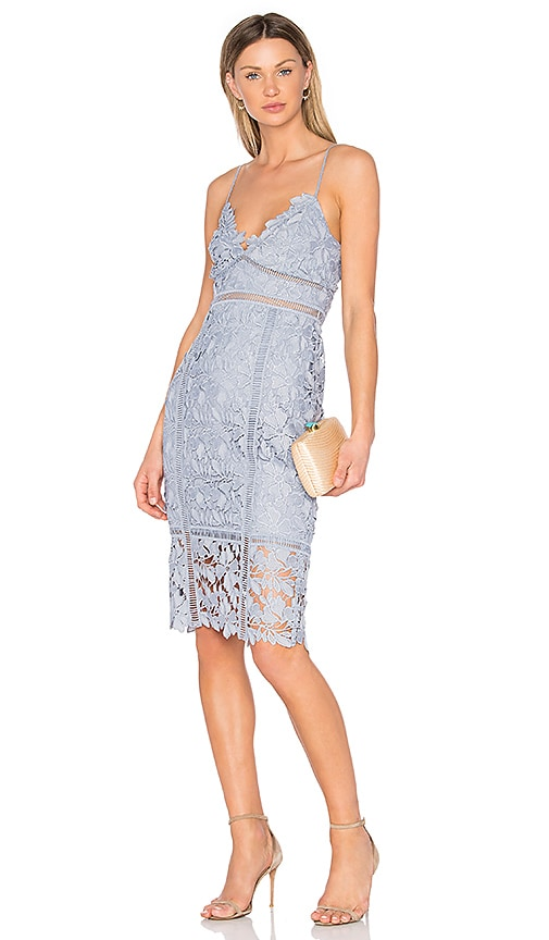 Bardot Botanica Lace Dress in Slate