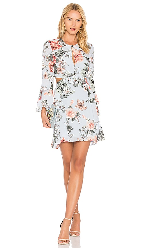 Bardot Floral Frill Dress in Baby Blue