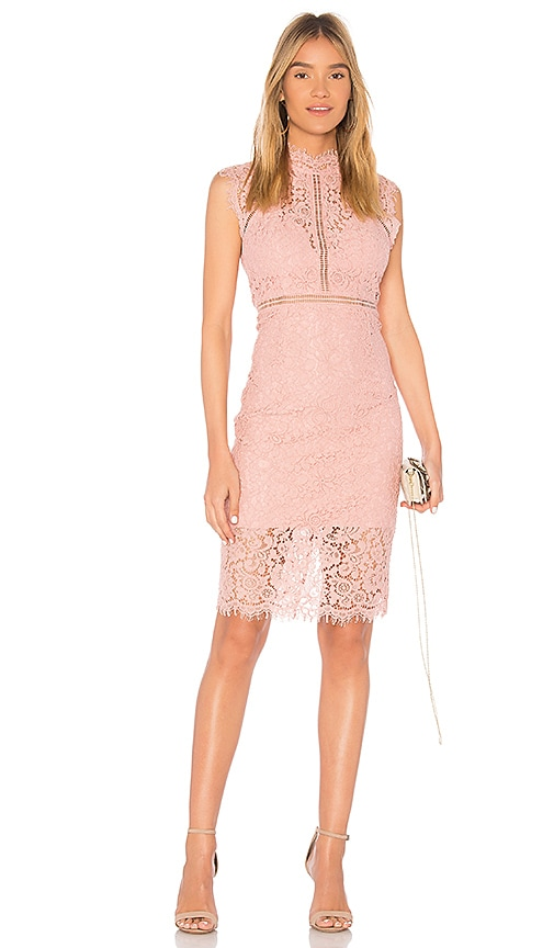 Bardot Lace Panel Dress in Pink