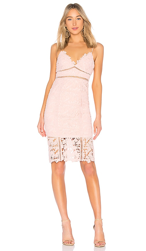 Bardot Botanica Lace Dress in Pink