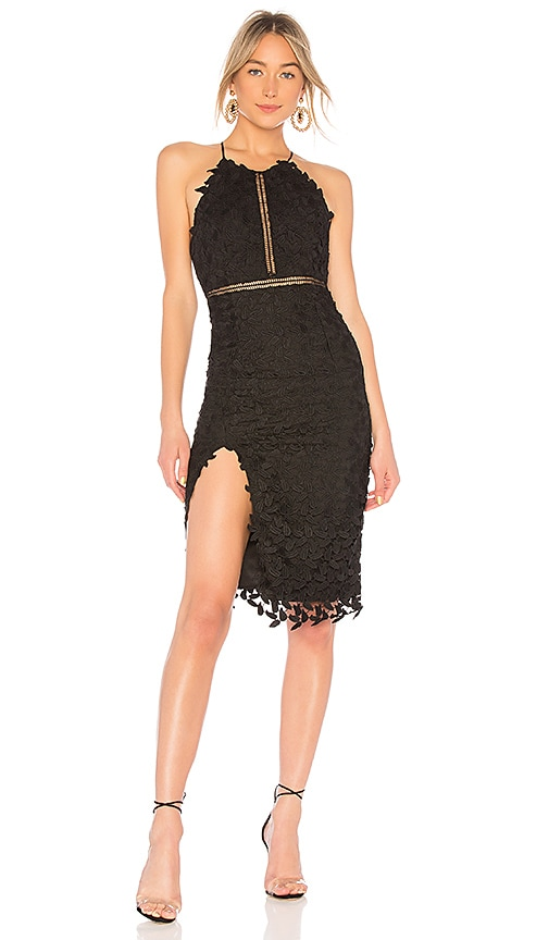 Bardot Tabytha Halter Dress in Black