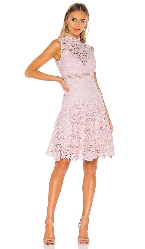 Elise Lace Dress