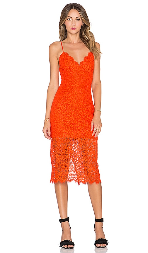 Bardot Sienna Lace Dress in Chilli