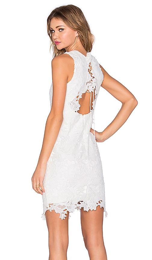 Rosette Lace Dress