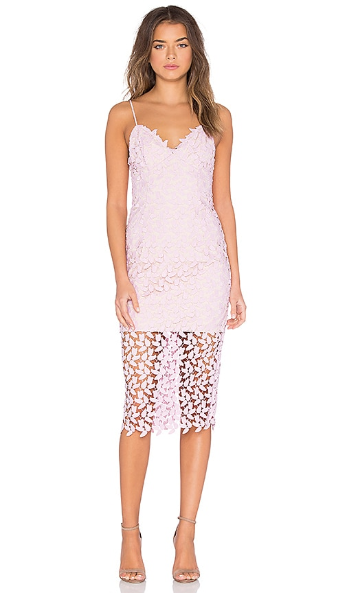 Bardot Flora Lace Midi Dress in Blush