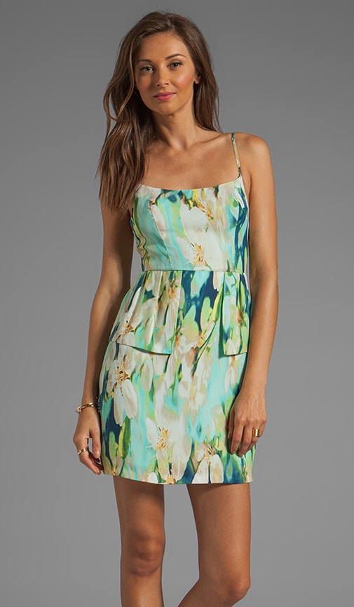 Debralyn Palm Beach Printed Dress
