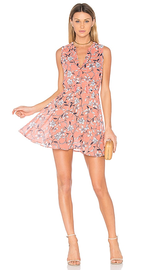 BB Dakota Adeen Dress in Pink
