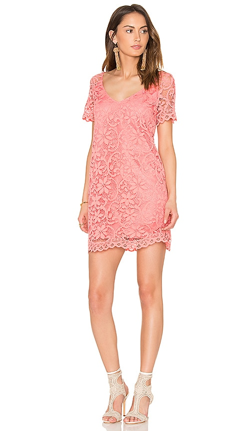 BB Dakota Rene Dress in Pink