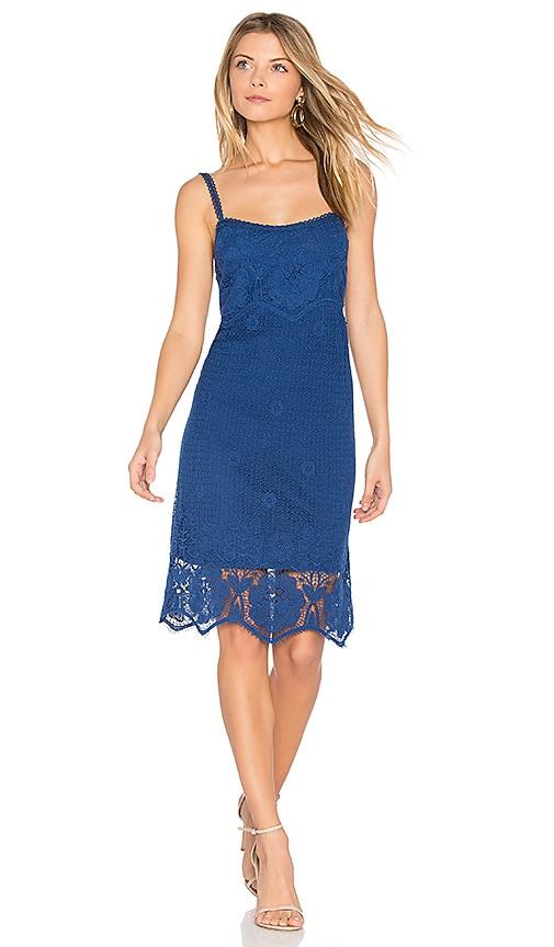 BB Dakota Cassia Dress in Blue