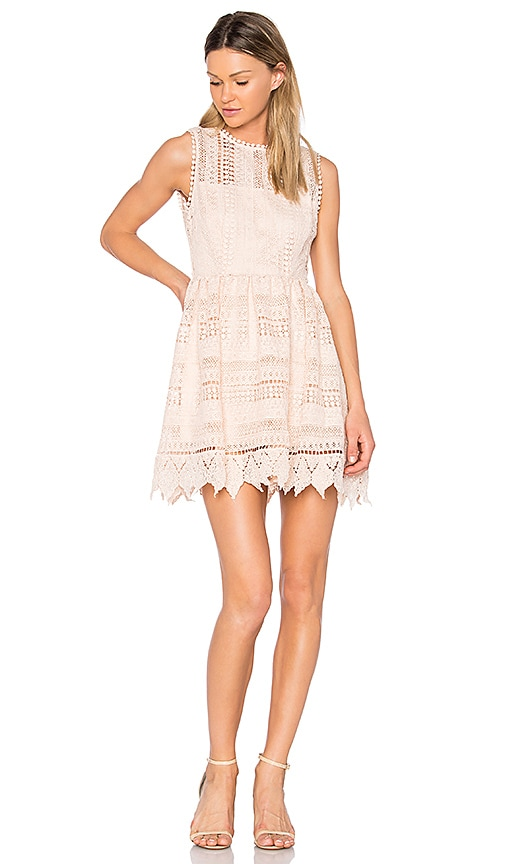 BB Dakota Elissa Dress in Blush