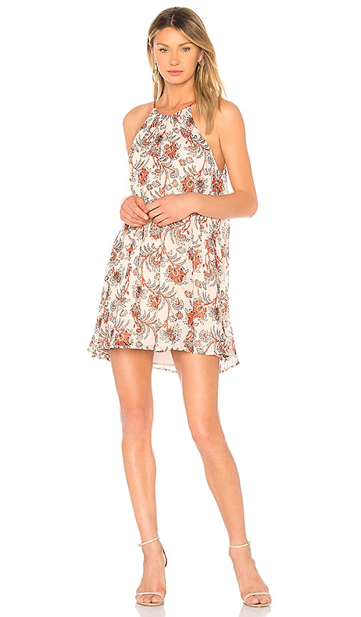 BB Dakota Alissa Dress in Beige