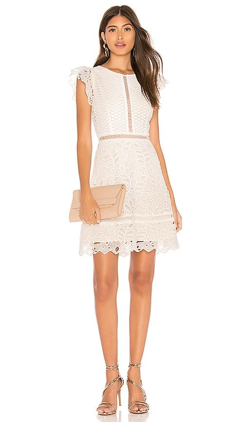 BB Dakota Ariane Dress in Ivory