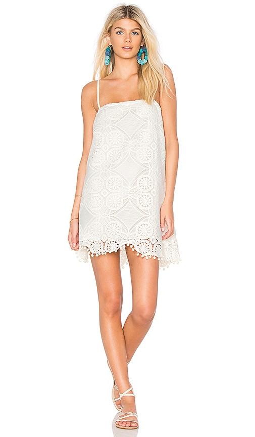 JACK by BB Dakota Danna Dress in White. - size S (also in L,M,XS) BB Dakota