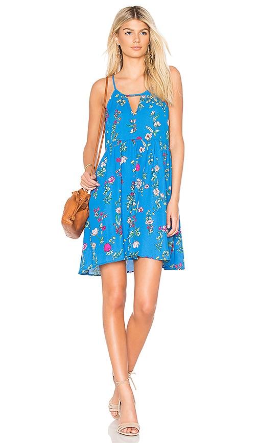 BB Dakota JACK by BB Dakota Maliyah Dress in Blue