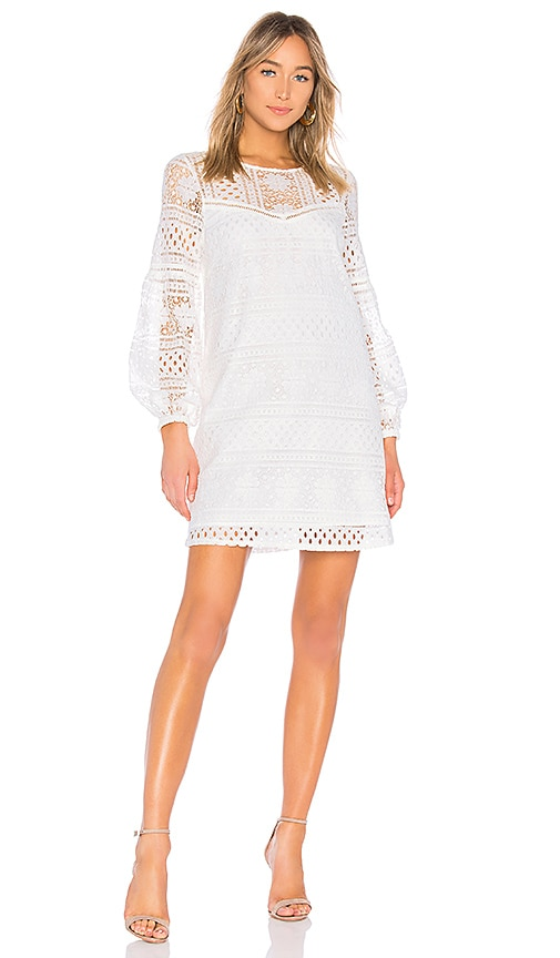 JACK by BB Dakota Currie Dress in White. - size L (also in M,S) BB Dakota