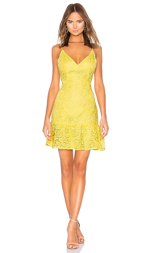 RSVP by BB Dakota Gisel Dress in Yellow. - size 0 (also in 2,4,6,8) BB Dakota