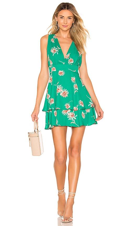 Garden Strolls Dress