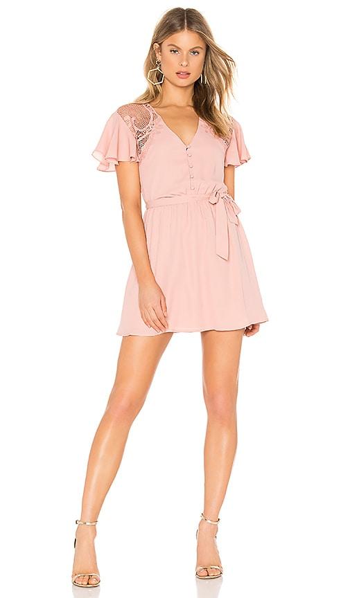 BB Dakota First Impressions Dress in Pink Lemonade  efda8a8cb