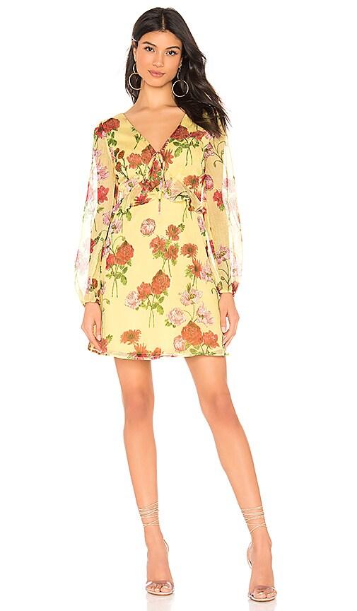 Botanical Bae Dress