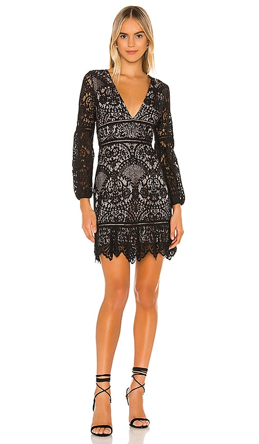 bb dakota lace dress dakota clothing company
