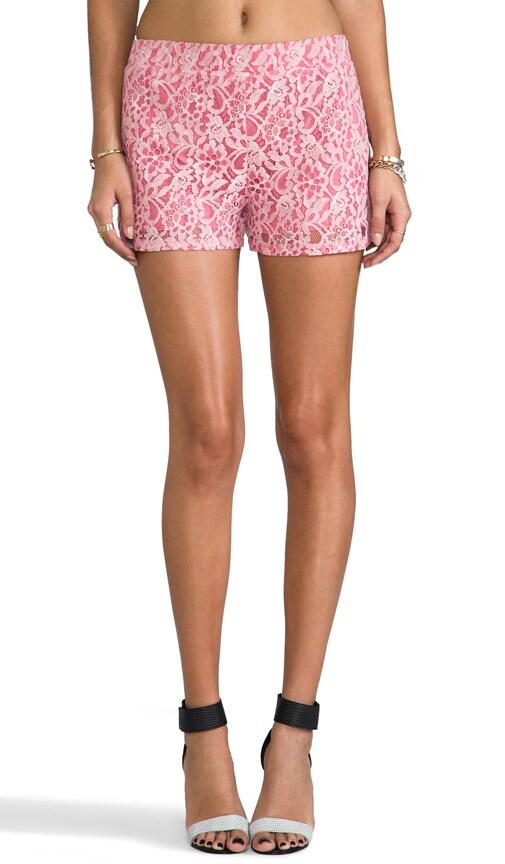 Milo 2Tone Lace Shorts