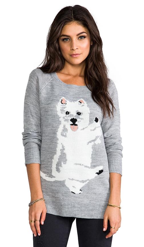 Colista Dog Pullover
