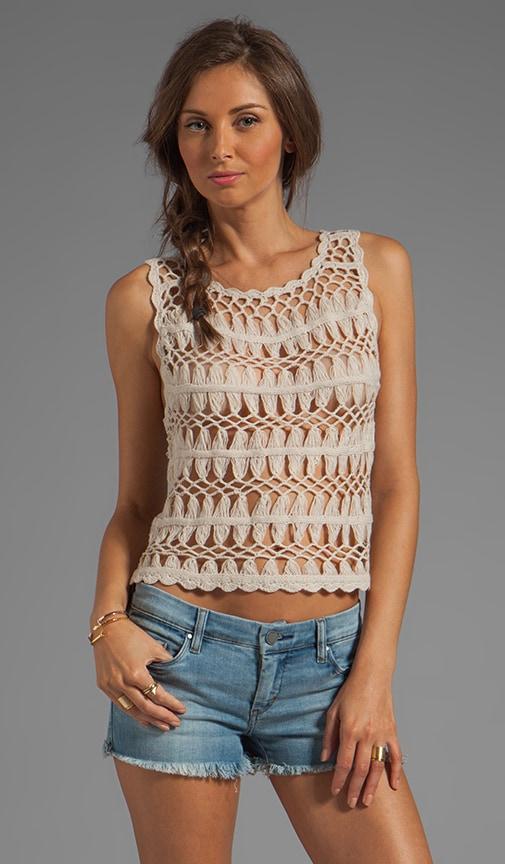 Paulette Crochet Lace Sweater Knit