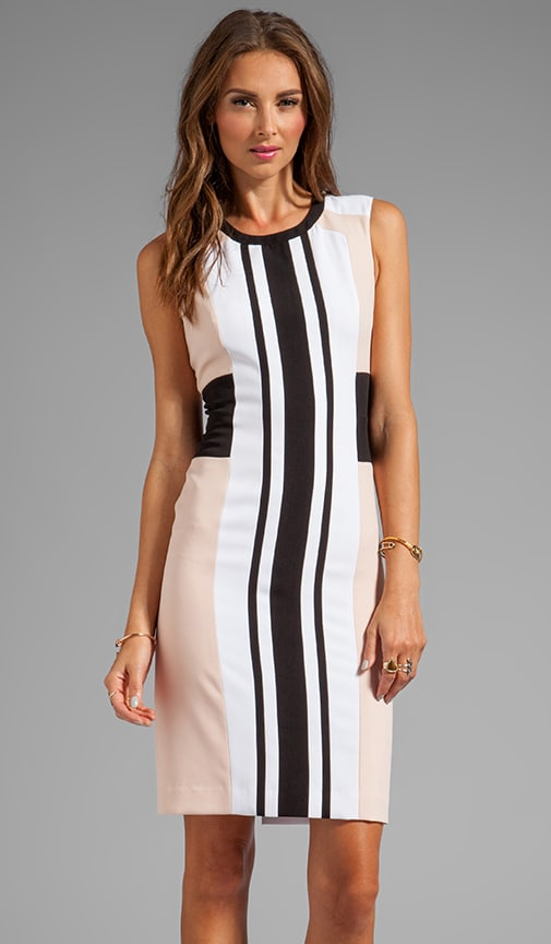 Sleeveless Stripe Front Dress