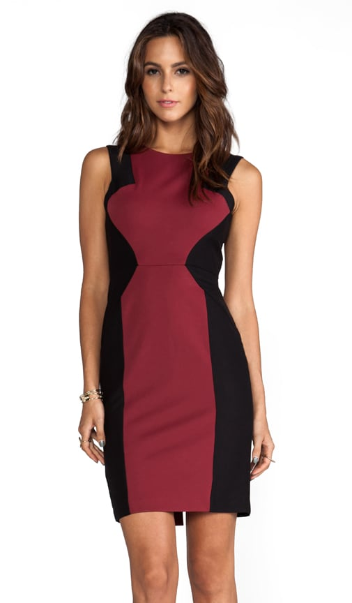 Evelyn Sleeveless Colorblock Dress