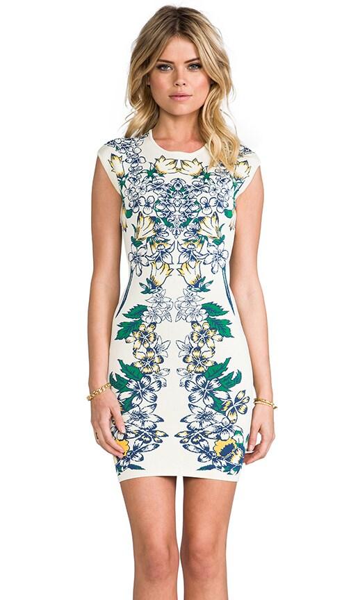 Ellena Dress