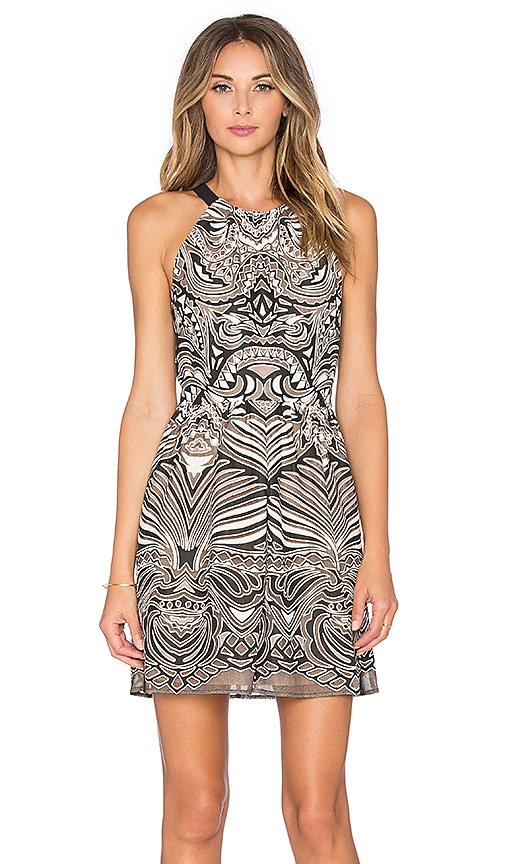 BCBGMAXAZRIA Cailyn Dress in Black & Bare Pink