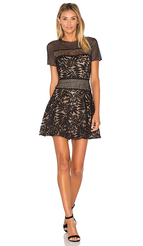 BCBGMAXAZRIA Lace Mini Dress in Black Combo
