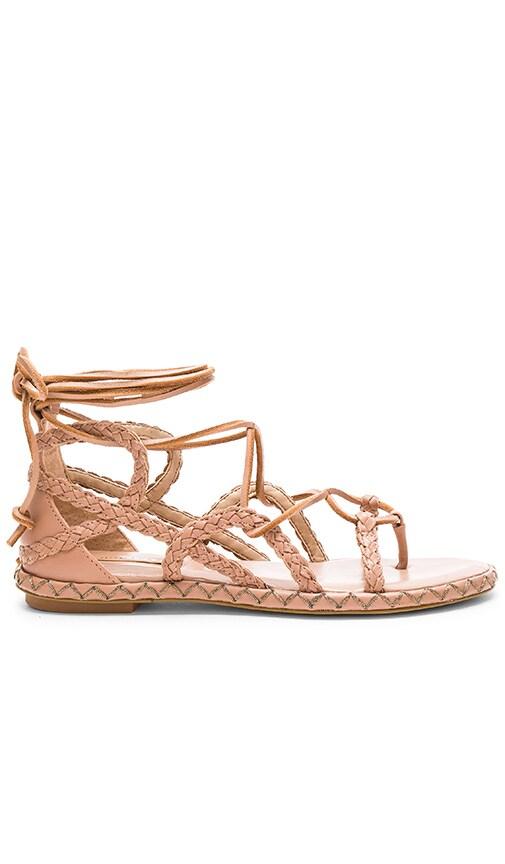 BCBGMAXAZRIA Maye Sandal in Rose