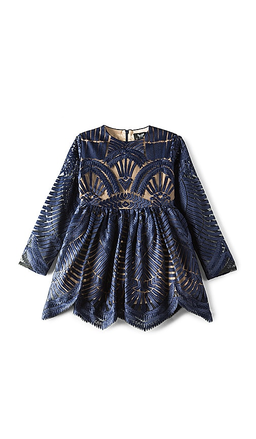 Bardot Junior Embroidered Mesh Dress in Navy
