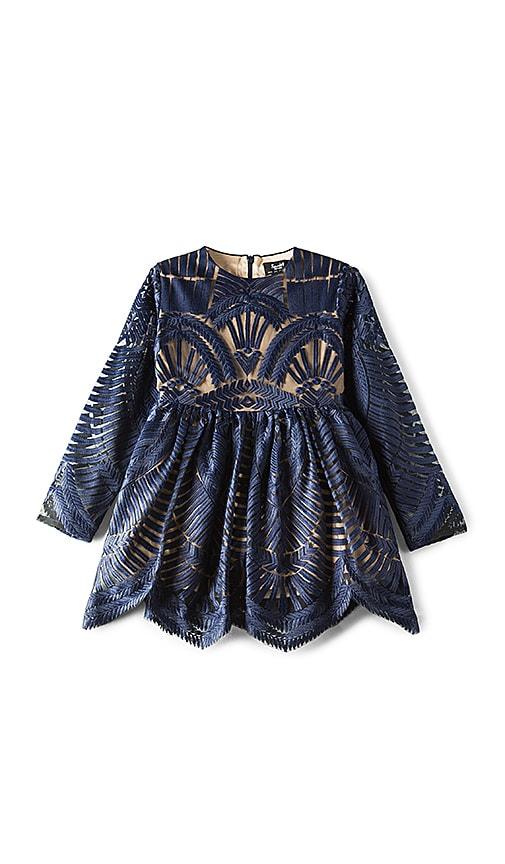 Bardot Junior Embroidered Mesh Dress in Navy