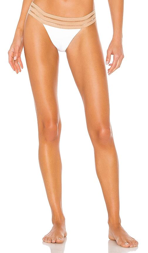 Sheer Addiction Brazilian Bikini Bottom