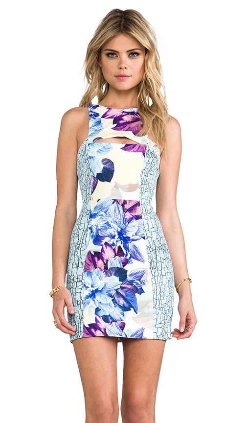Anenome Cut Out Dress
